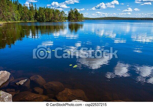 foresta, riflessione, pino, lago - csp22537215