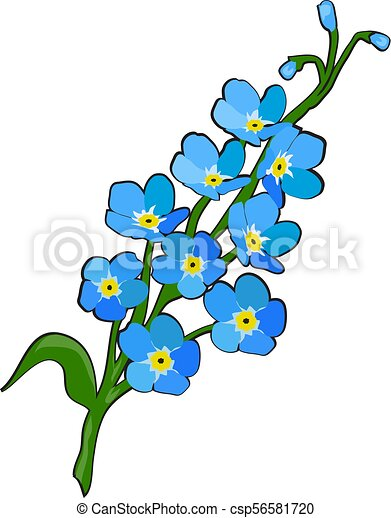 vector forget me not flower vector illustration search clipart rh canstockphoto co uk forget me not border clip art forget me not border clip art free