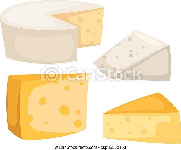 formaggio, vettore, isolato, fette - csp36558153