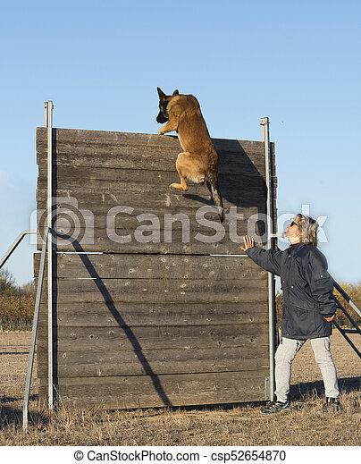 formation, chien policier - csp52654870