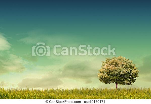 forrest, fondo, erba, paesaggio, albero verde, campo, primavera - csp10160171