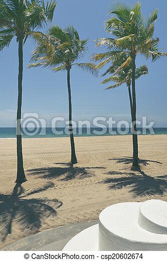 Fort Lauderdale Beach - csp20602674