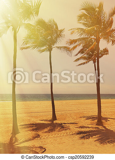 Fort Lauderdale Beach - csp20592239