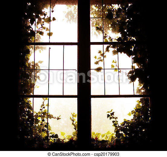 Foto de la ventana a la naturaleza - csp20179903
