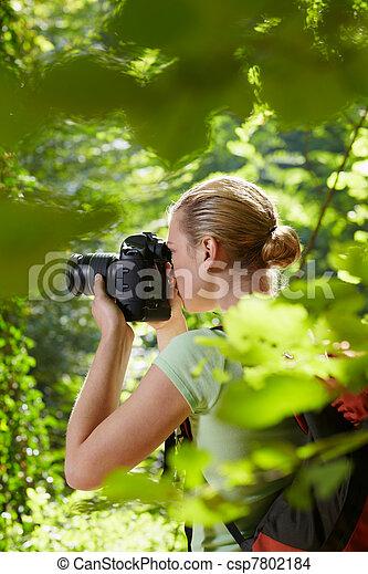 fotograf, weibliche , junger, wandern, wald - csp7802184