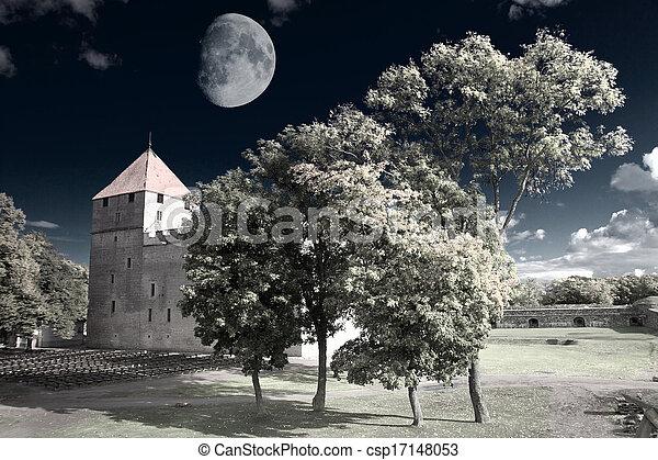 fotografia, infravermelho - csp17148053