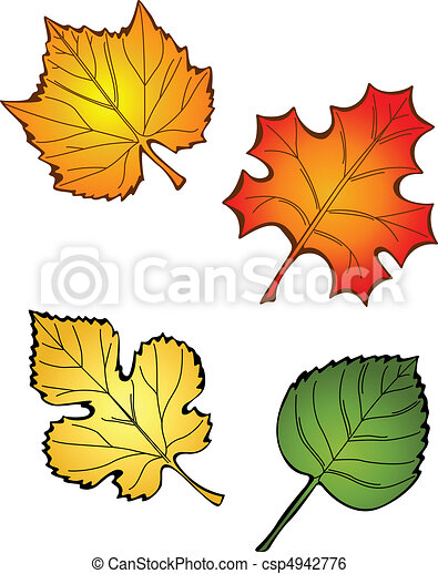 Four Fall Leaves - csp4942776