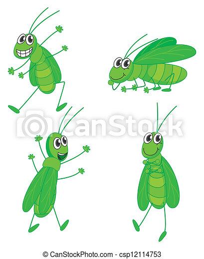 Four grasshoppers - csp12114753