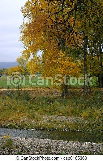 Día de otoño frío - csp0165360
