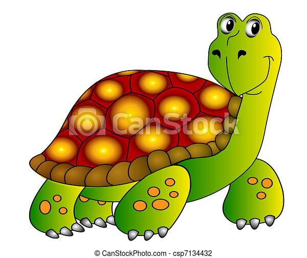 fröhlich, wasserschildkröte, isoliert, weißes - csp7134432