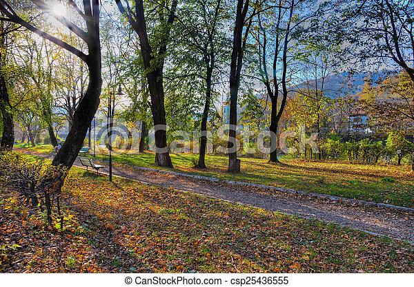 Fragment of city park - csp25436555
