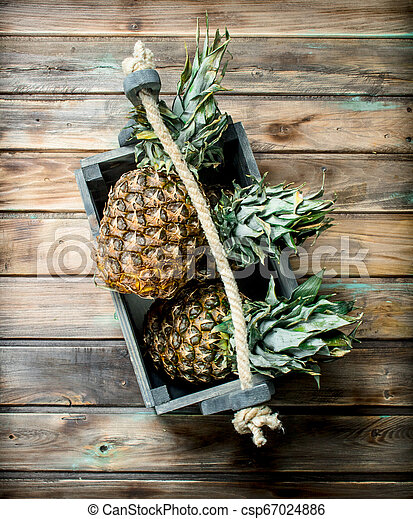 Fragrant pineapples in the box. - csp67024886