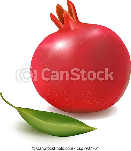 Frais grenade feuille vert illustration grenade leaf vecteur vert frais - Grenade fruit dessin ...