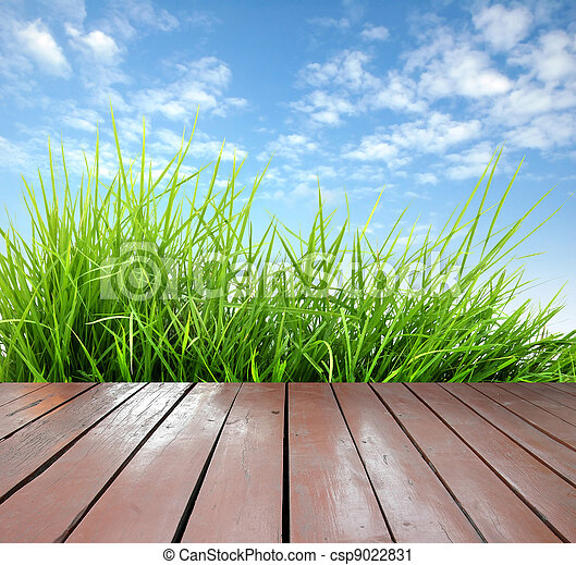 frais, herbe, bois, vert, printemps, terrasse - csp9022831