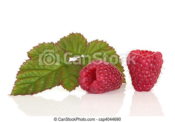 framboesa, fruta - csp4044690
