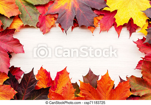Frame of autumn maple leaves isolated on white background - csp71183725