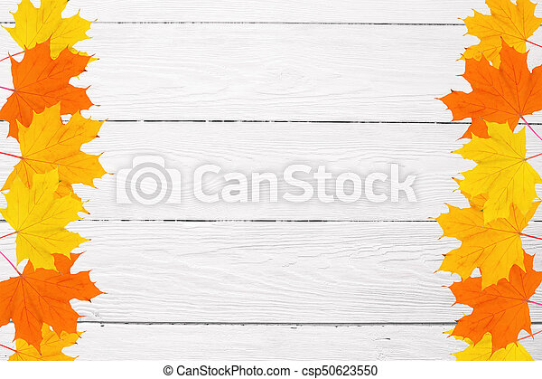 frame of autumn maple leaves on a white wooden background and space for text - csp50623550