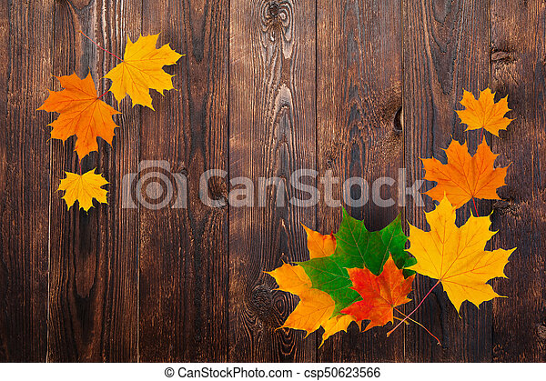 frame of autumn maple leaves on a wooden background. Design and space for text - csp50623566