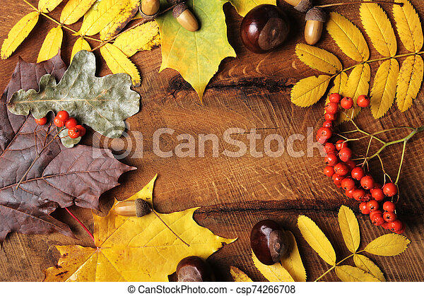 Frame of Autumn maple leaves on aged wood with copy space. Mockup for seasonal offers and holiday post card, top view - csp74266708