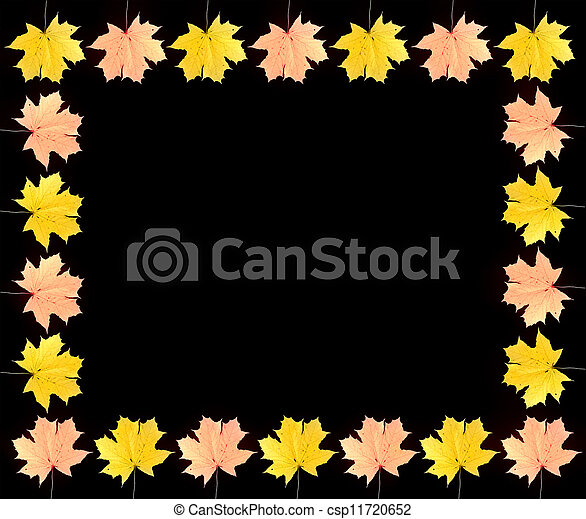 frame of autumn maple leaves - csp11720652
