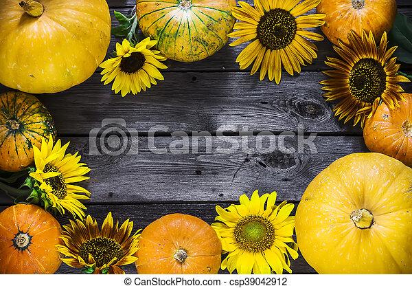 Frame Of Pumpkins And Sunflowers On Wooden Background Harvest Autumn Copy Space Selective Focus