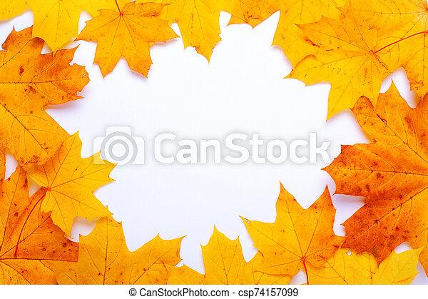 frame of yellow-orange autumn maple leaves - csp74157099