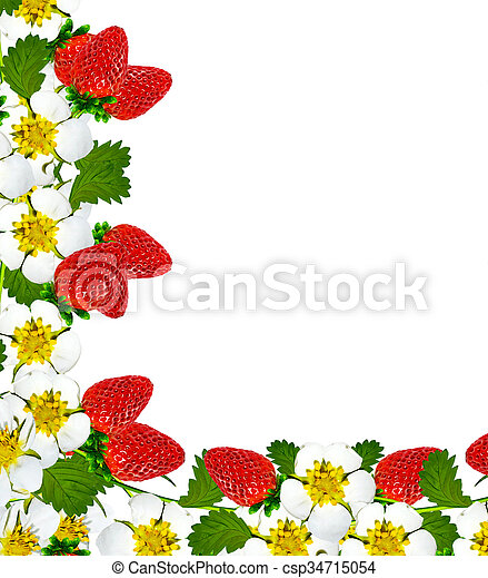 Frame with berries and flowers of strawberry.