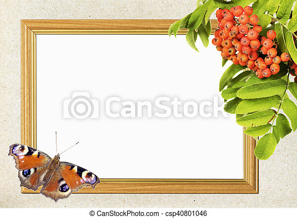Frame with bunch of mountain ash and butterfly. Frame for photo with ...
