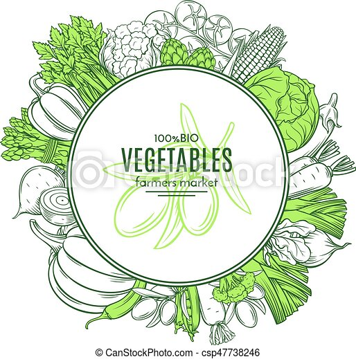 frame with hand drawn vegetables - csp47738246