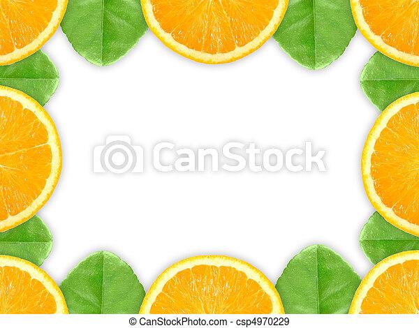 Frame With Orange Fruit And Green Leaf