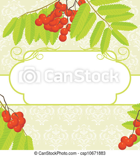 Frame with rowan branches - csp10671883