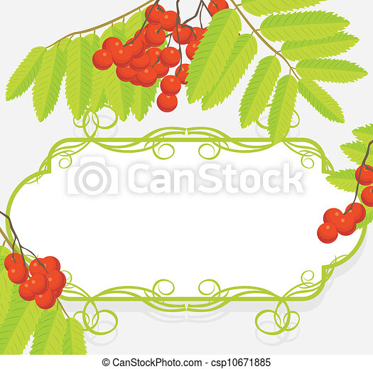 Frame with rowan branches - csp10671885