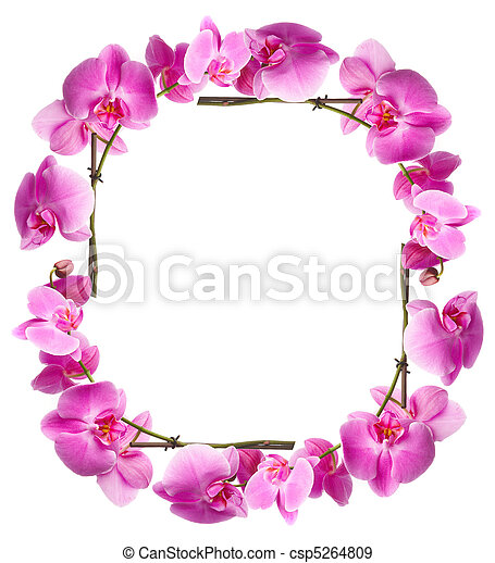 Framework from flowers orchids - csp5264809