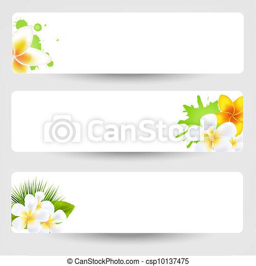 Banners con flores frangipani - csp10137475