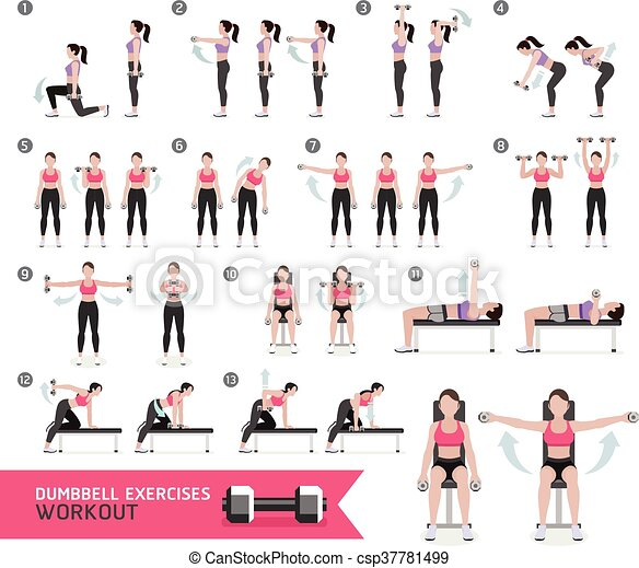 frau illustration workout fitness vektor exercises