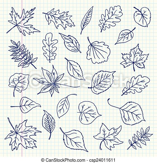 Freehand drawing autumn leaves item - csp24011611