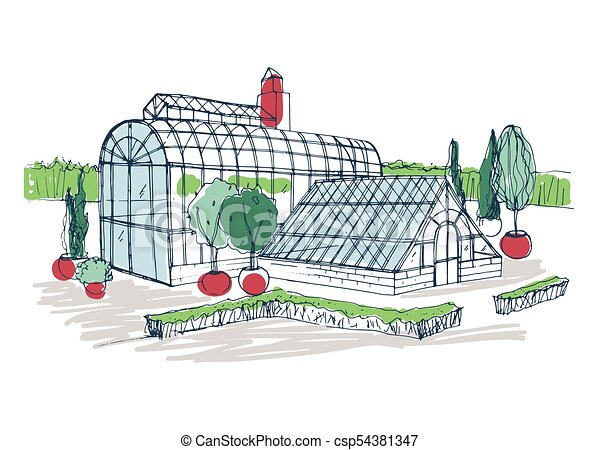 Freehand drawing of exterior of tropical botanical garden surrounded by bushes and trees growing in pots. Rough sketch of facade of glass greenhouse. Colorful hand drawn vector illustration. - csp54381347