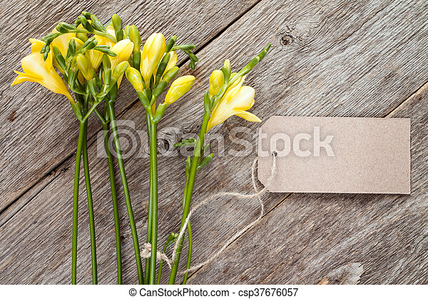 Freesias with blank tag - csp37676057