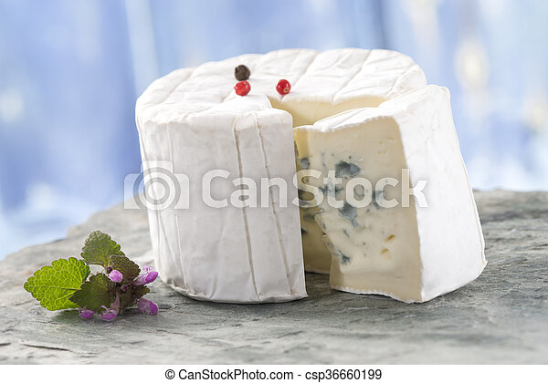 french blue cheese bresse bleu french blue bresse bleu traditional