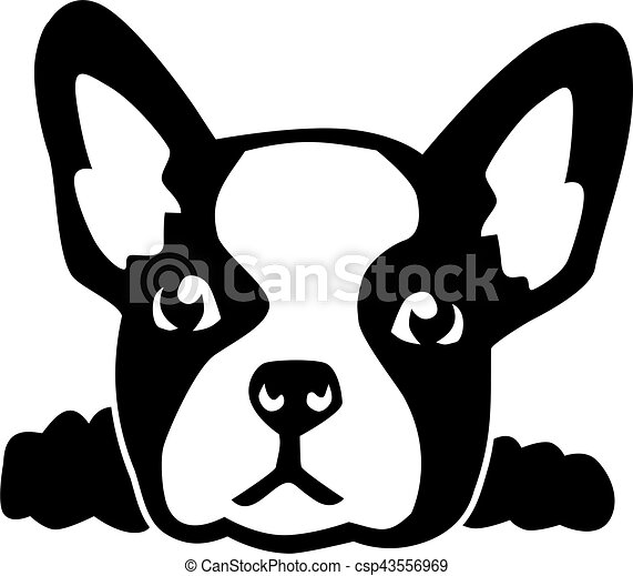french bulldog head clip art vector search drawings and graphics rh canstockphoto com clip art bullet points clipart bullet