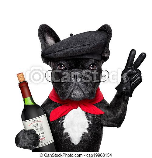 french dog - csp19968154