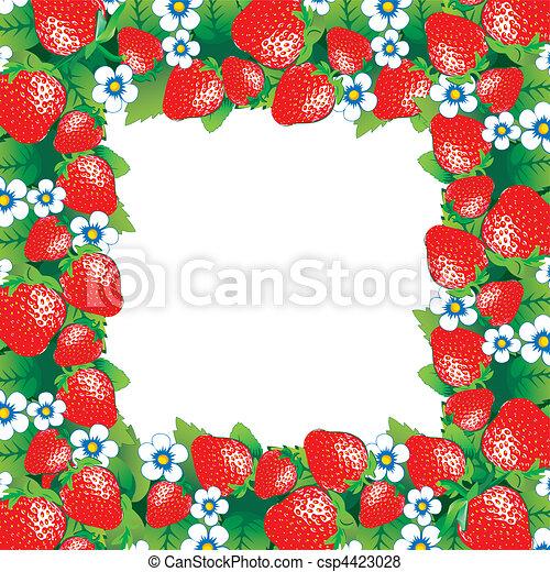 El marco de fresa. - csp4423028