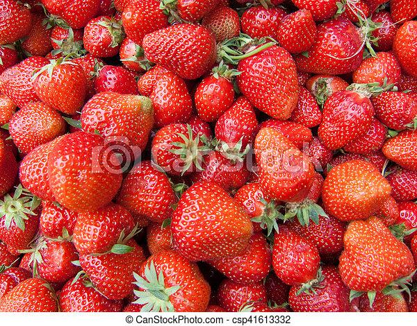 Fresas - csp41613332