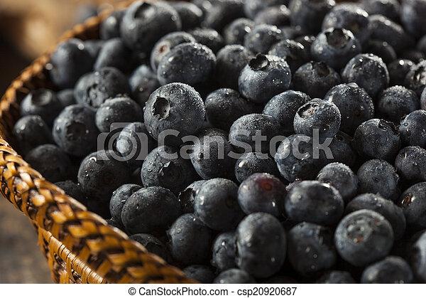 Arándanos frescos orgánicos crudos - csp20920687