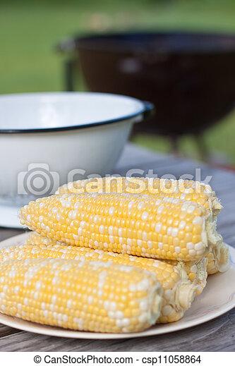 fresco, blanco, maíz, placa - csp11058864