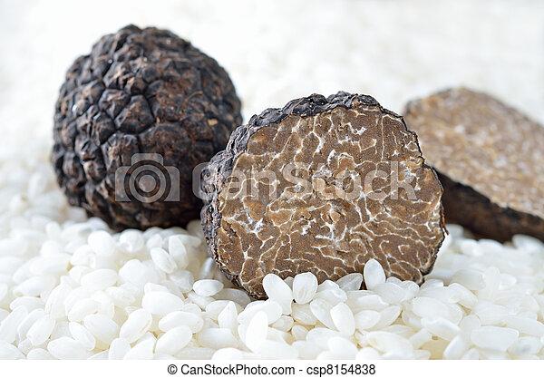 Trufas negras frescas - csp8154838