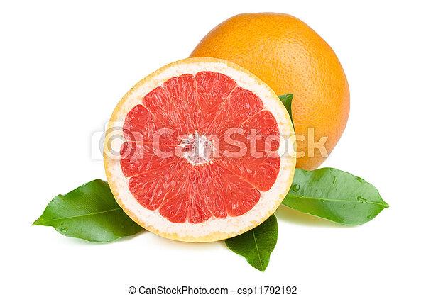 Fruta fresca y jugosa - csp11792192