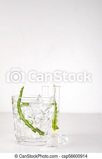 fresh aloe vera leaves and aloe vera juice in glass on white background - csp56600914