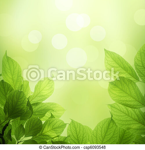 fresh and green leaves - csp6093548