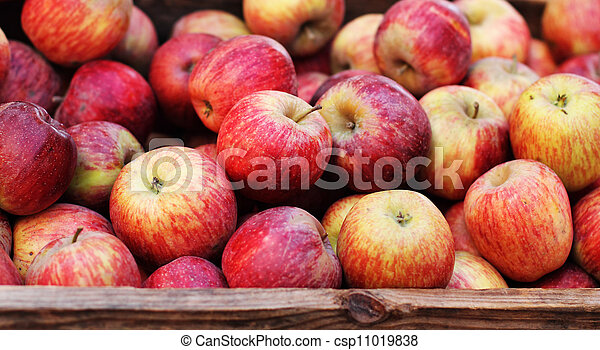 fresh apples from the farm in a wooden crate - csp11019838